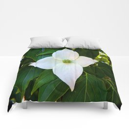 Kousa Dogwood Flower Vertical Comforters