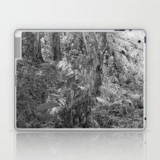 Rain forest view with creek Laptop & iPad Skin
