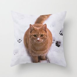 Ginger Kitty Discovers Snow! Throw Pillow