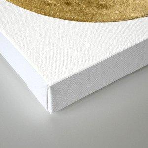 Golden Moonage Canvas Print