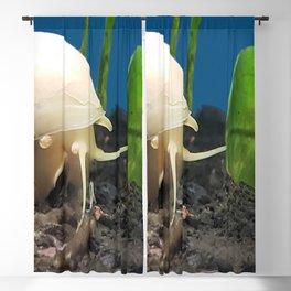 At A Snails Pace Blackout Curtain