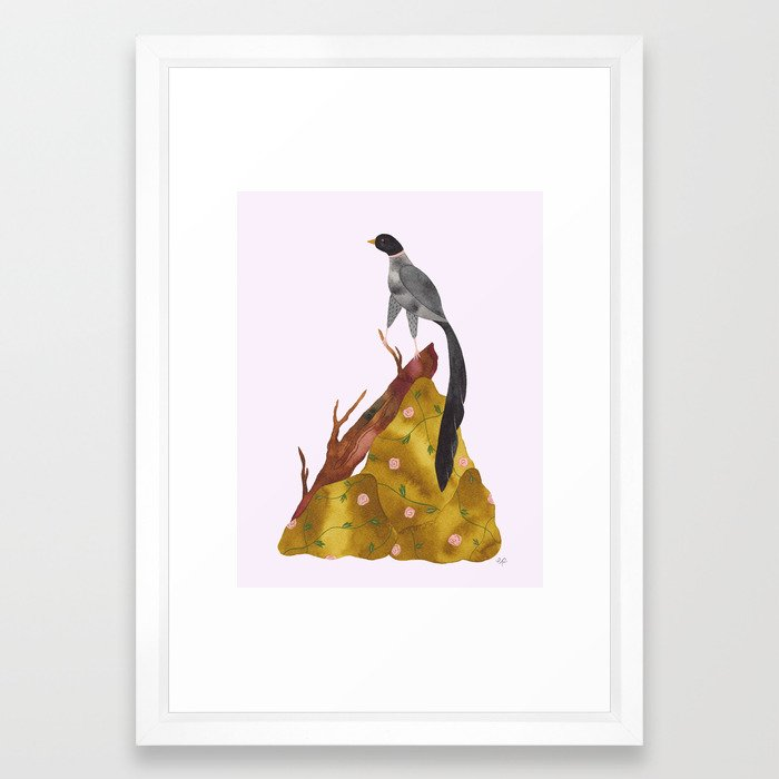 Long tail bird Framed Art Print by hillabovewilds | Society6