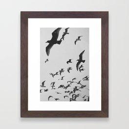 Flock 2 Framed Art Print