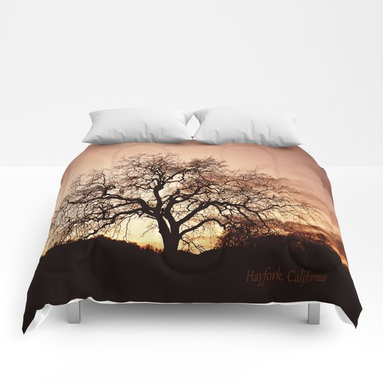 Fall evening.... Comforters