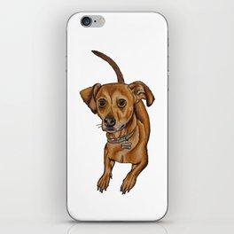 Maxwell the dog iPhone Skin