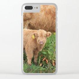 Highland Calf Clear iPhone Case