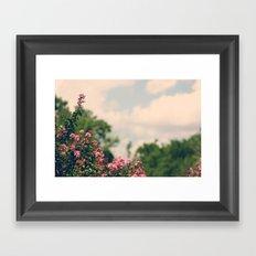 Soft Hues III Framed Art Print