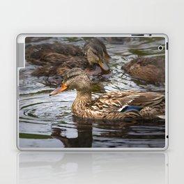 Mallard Family Laptop & iPad Skin