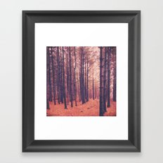 Vintage Pines Framed Art Print