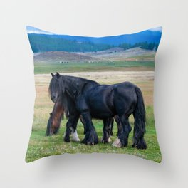 Gypsy Vanner Horses 0258 - Colorado Throw Pillow