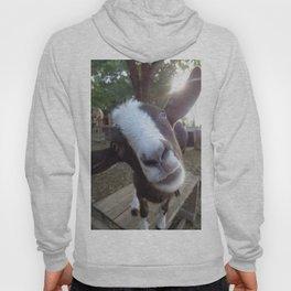Goat Barnyard Farm Animal Hoody