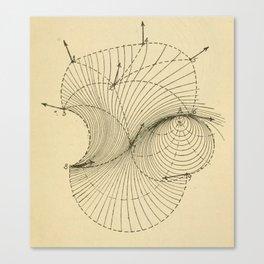 Fluid Dynamics Canvas Print