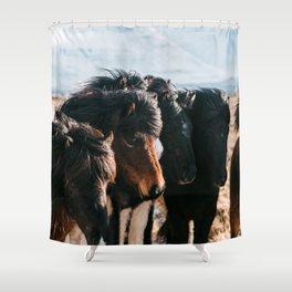 Horses in Iceland - Wildlife animals Shower Curtain