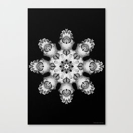 Black-and-White Abstract 29 Canvas Print