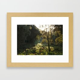 The Forests of Kilimanjaro Framed Art Print