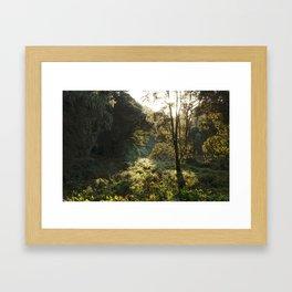 The Forests of Kilimanjaro Framed Art Print