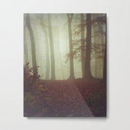 November Light Metal Print