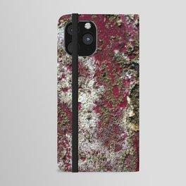 Rusty art  iPhone Wallet Case