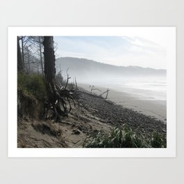 Misty Morning Walk Art Print
