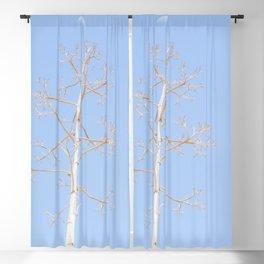"""Century Plant 3"" by Murray Bolesta Blackout Curtain"