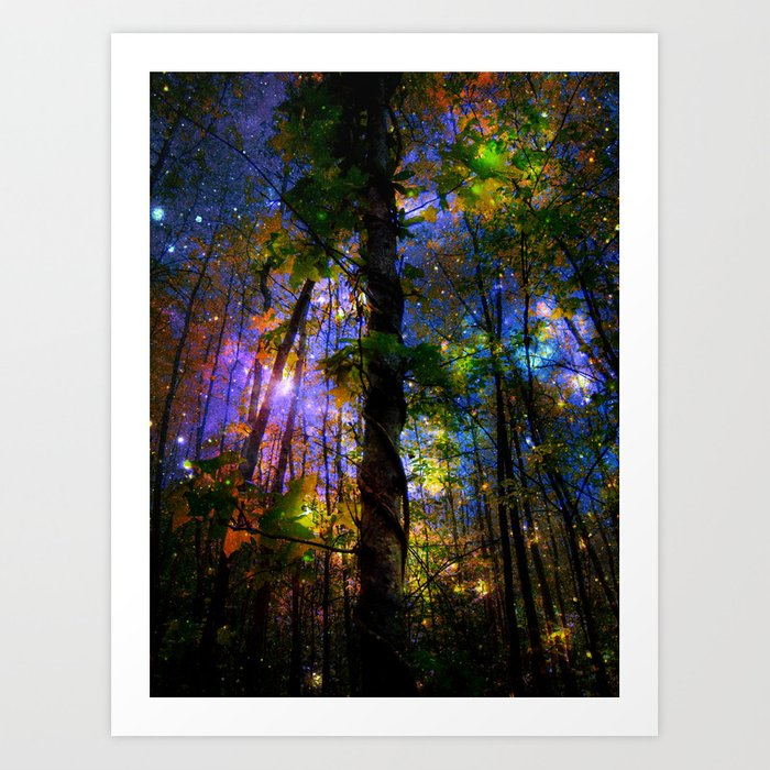 Forest of the Fairies Night Art Print