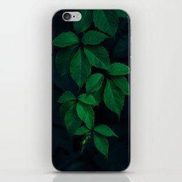 Leaves by Rodion Kutsaev iPhone Skin