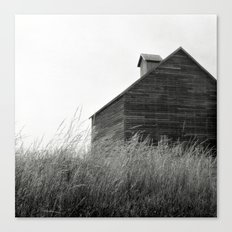 From Grace. Canvas Print