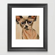 Hairless Sphynx Cat Framed Art Print