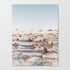 white sands Canvas Print