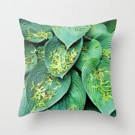 489 - Key Catchers Throw Pillow