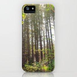 Woods Nature iPhone Case