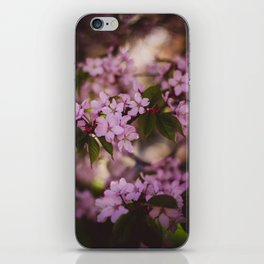 Beauty of Spring IV iPhone Skin