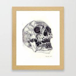 Skull pencil drawing Framed Art Print