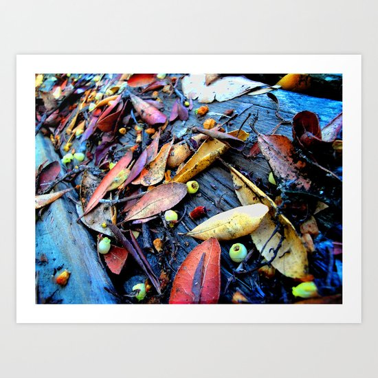 Leaves of a Strawberry Tree Art Print