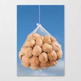 Bag of nuts Canvas Print