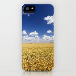 sunlit landscape iPhone Case