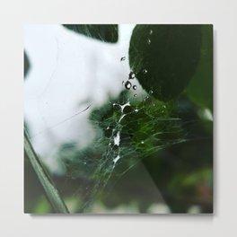 Webbed droplets Metal Print