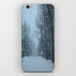 Snowy Street iPhone Skin