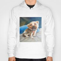 yorkie Hoodies featuring Yogi the Yorkie by Steve James