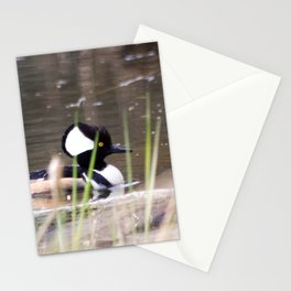 Hooded Merganser Swims Stationery Cards