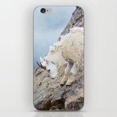 Mountain Goat iPhone Skin