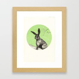 A rabbit Framed Art Print