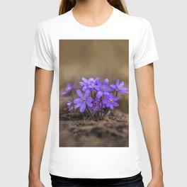 Hepatica in the park T-shirt