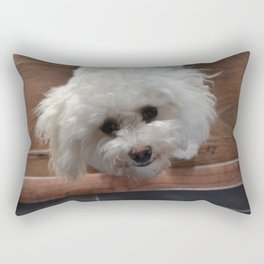Cavachon Rectangular Pillow