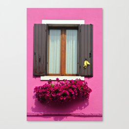 Pink Burano Window Canvas Print
