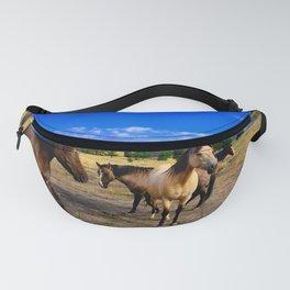 Happy Ponys Fanny Pack
