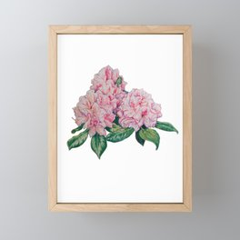 Rhododendron Framed Mini Art Print