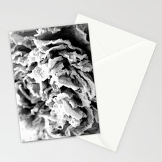 Black and White Dried Peony Stationery Cards