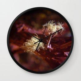 Sea Ranch fungi Wall Clock
