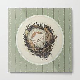 Sleeping Salix Metal Print